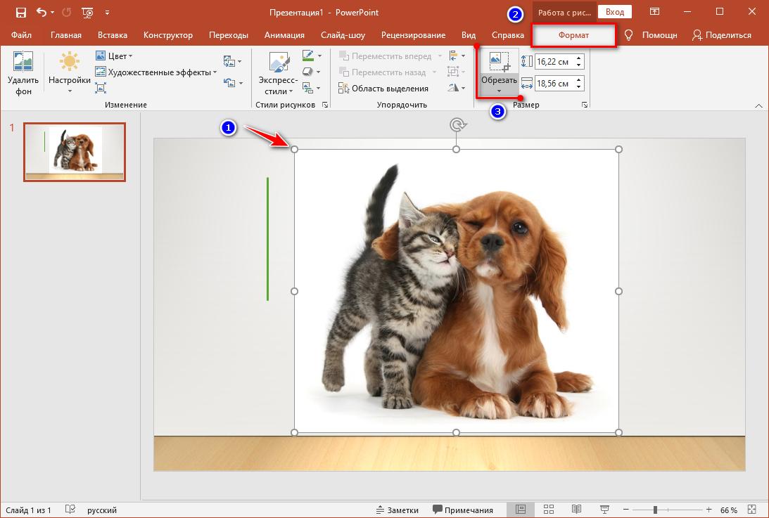 Инструкция по обрезке фото в PowerPoint